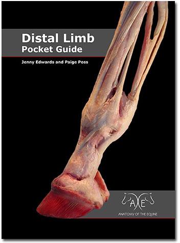Distal Limb Pocket Guide
