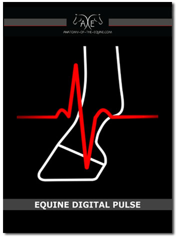 Equine Digital Pulse Cover