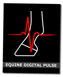 Equine Digital Pulse Ebook